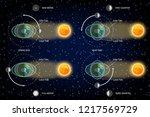 lunar and solar tides diagram.... | Shutterstock . vector #1217569729