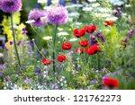 Wild Flower Garden With Poppie...