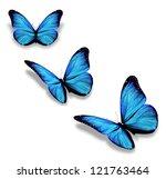 Three Blue Butterflies ...