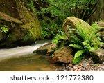 a small river flows through a... | Shutterstock . vector #121772380
