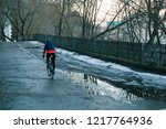 bicyclist in the park. winter... | Shutterstock . vector #1217764936