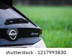 riga  may 2018   nissasn leaf   ... | Shutterstock . vector #1217993830
