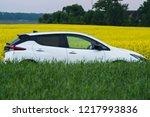 riga  may 2018   nissasn leaf   ... | Shutterstock . vector #1217993836