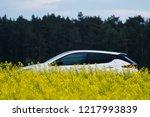 riga  may 2018   nissasn leaf   ... | Shutterstock . vector #1217993839