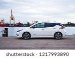 riga  may 2018   nissasn leaf   ... | Shutterstock . vector #1217993890