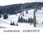winter in schwarzwald....   Shutterstock . vector #1218013573