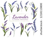 collection of lavender flowers. ... | Shutterstock .eps vector #1218113800