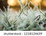 grass is frozen in ice crystals ... | Shutterstock . vector #1218124639