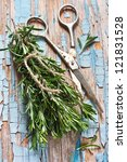 Bunch of fresh rosemary and old scissors on a wooden background. - stock photo