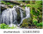 triberg waterflls in...   Shutterstock . vector #1218315853