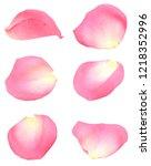 Stock photo a pink petal roses 1218352996