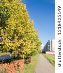 linden trees along the track. | Shutterstock . vector #1218425149