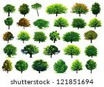 Collection Green Trees. Vector...