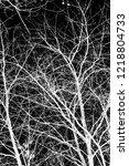tree branches white silhouette... | Shutterstock . vector #1218804733
