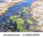 bolivia  salar de uyuni  aguas...   Shutterstock . vector #1218816850