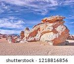 bolivia  salar de uyuni  arbol...   Shutterstock . vector #1218816856