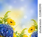 Stock photo bouquet from blue hydrangeas and yellow asters a flower background 121882090