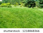 urban photography  a lawn is an ... | Shutterstock . vector #1218868366