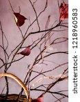 late autumn still life  ikebana ... | Shutterstock . vector #1218960583