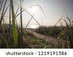 beach near dassow at sundown   Shutterstock . vector #1219191586
