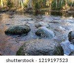 autumn forest river rocks view. ...   Shutterstock . vector #1219197523