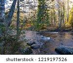 autumn forest river scene....   Shutterstock . vector #1219197526