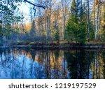 autumn forest river water...   Shutterstock . vector #1219197529