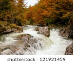 River In The Forest With Rapids....