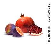 fresh  nutritious garnet  tasty ... | Shutterstock .eps vector #1219296256