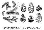 sketch of fir branches and... | Shutterstock .eps vector #1219320760