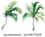 set of pictures of hand drawn...   Shutterstock . vector #1219477429