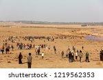 palestinian demonstrators... | Shutterstock . vector #1219562353