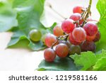 one branch of ripe pink juicy... | Shutterstock . vector #1219581166