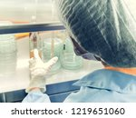 blurred of scientist doing the... | Shutterstock . vector #1219651060