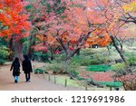 autumn scenery of tourists...   Shutterstock . vector #1219691986