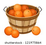 basket,beautiful,beige,brown,citrus,container,crop,design,drawing,eating,food,fruit,harvest,illustration,isolated