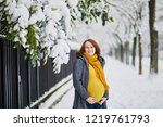 beautiful pregnant woman on her ... | Shutterstock . vector #1219761793