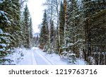 winter snow forest road... | Shutterstock . vector #1219763716