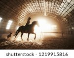 majestic image of horse horse... | Shutterstock . vector #1219915816