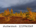 Russia. Magadan Region. Autumn...
