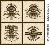 diving set of four vector brown ... | Shutterstock .eps vector #1220126719