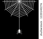 spider hanging on the cobweb... | Shutterstock .eps vector #1220140276