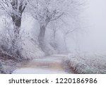 frozen winter wonderland | Shutterstock . vector #1220186986