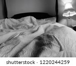 unmade bed sheets crumpled... | Shutterstock . vector #1220244259