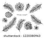 pine cones drawing illustration ... | Shutterstock .eps vector #1220380963
