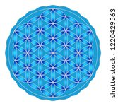 flower of life on a isolated... | Shutterstock .eps vector #1220429563