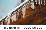 frozen mysterious mansion with... | Shutterstock . vector #1220436193