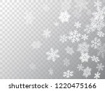 winter snowflakes border cool... | Shutterstock .eps vector #1220475166