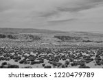 Black and White Desert without any lives in the USA