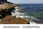 coast of the black sea. waves... | Shutterstock . vector #1220624326
